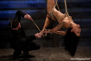 Chayna latino swinger parties in Circleville